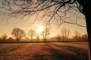 Bis zum Sonnenaufgang: Sternbilder in den frühen Morgenstunden beobachten